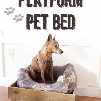 Southern Revivals | DIY Platform Pet Bed