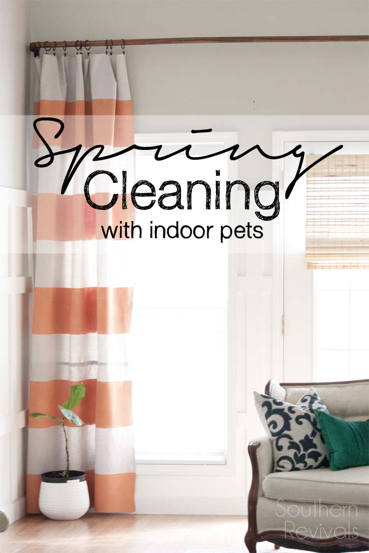 Spring Cleaning Pet Hair