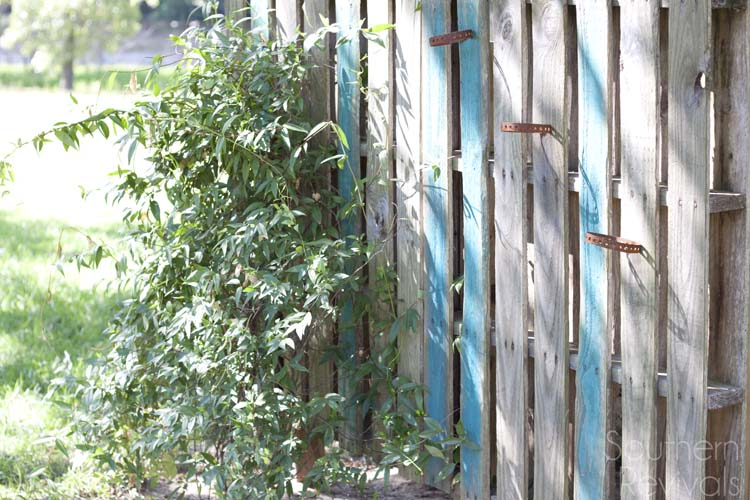 DIY-Pallet-Garden-Wall 3