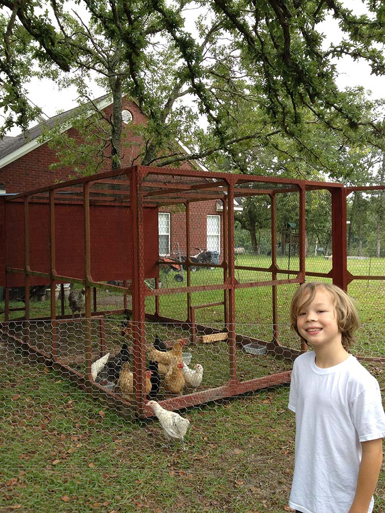 Fancy Farmhouse Chicken Coop