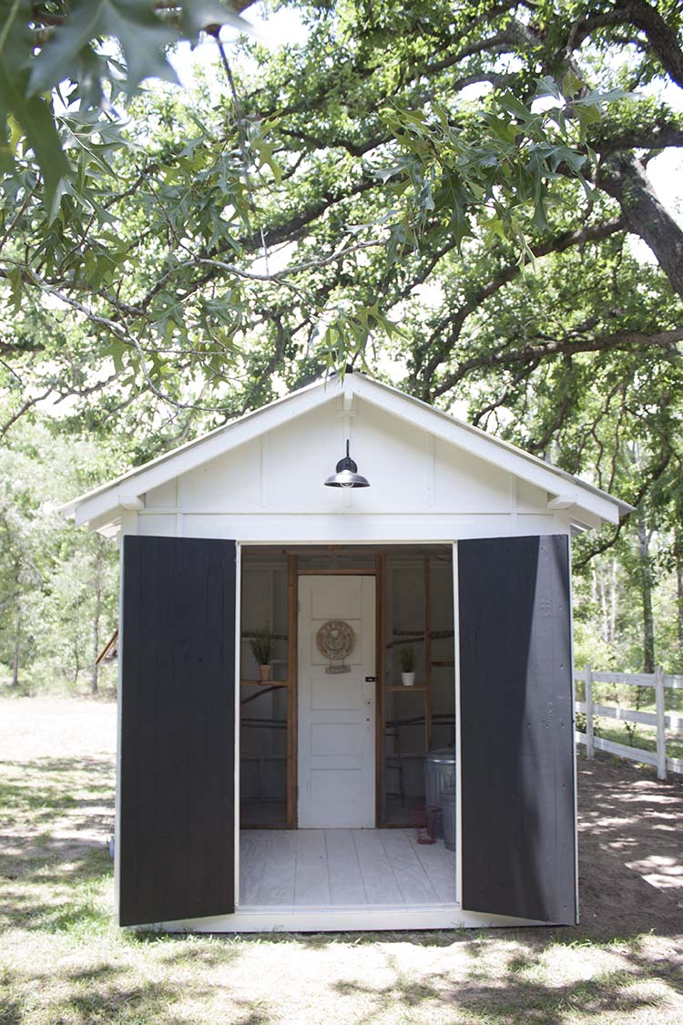 doors open inside chicken coop