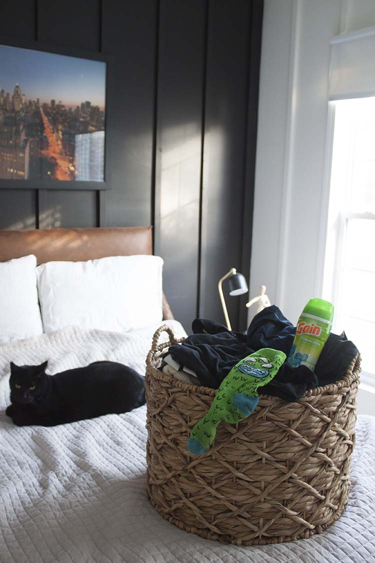 laundry basket cat on bed