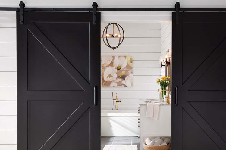Black Barn doors