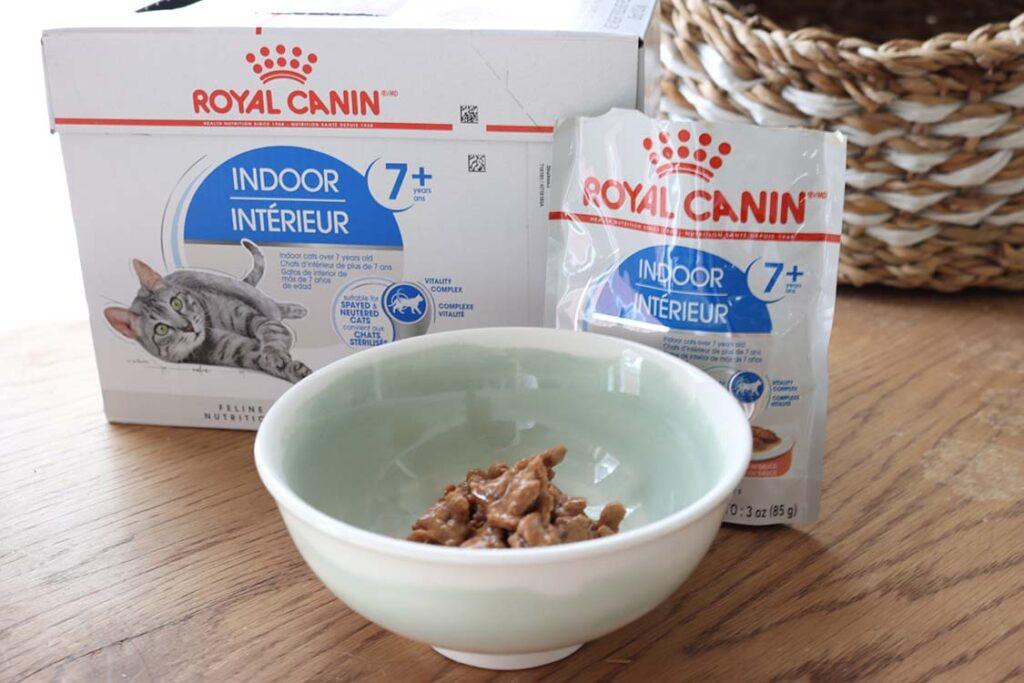 cat-food-bowl